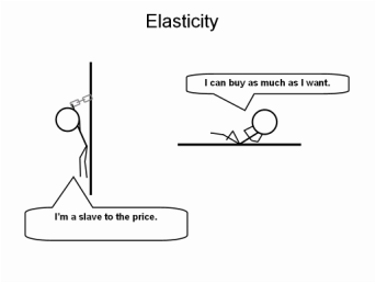 Economics notes on elasticity of demand